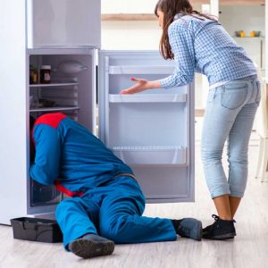 appliance-repairs-pretoria-fridge-repair